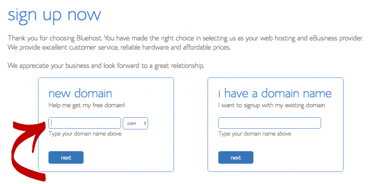 choose your domain - bluehost
