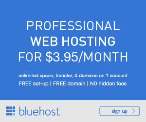 Should I Use BlueHost