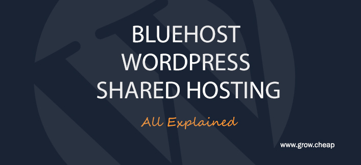 BlueHost Vs WordPress Vs Shared Hosting