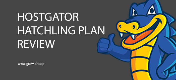 HostGator Hatchling Plan Review (+61% Discount)