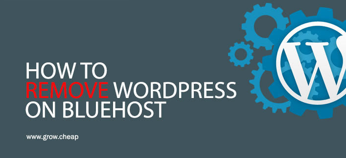 How To Remove WordPress On BlueHost? (Updated)