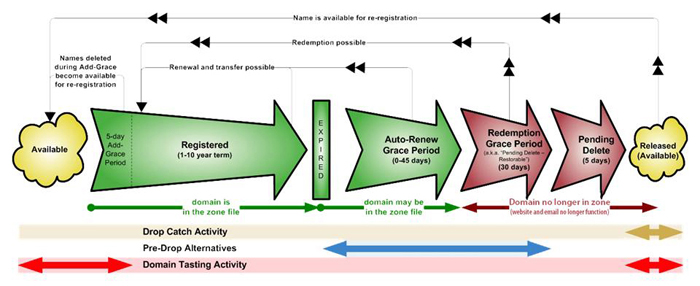 Typical Domain Lifecycle