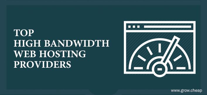 Top High Bandwidth Web Hosting Providers
