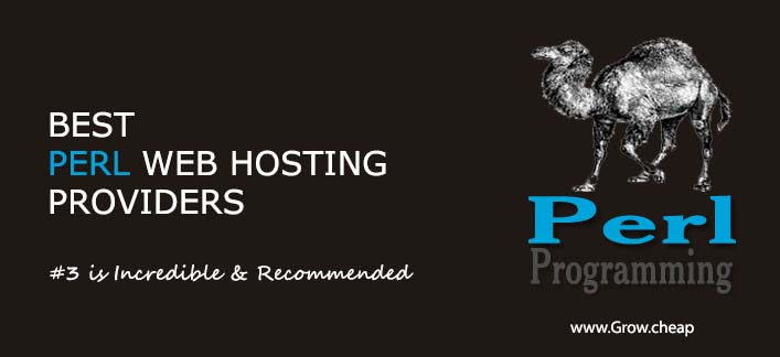 Best Perl Web Hosting Providers (#3 is Incredible) #Perl #CGI #Hosting #WordPress